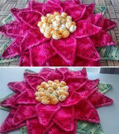 Artesanato com amor...by Lu Guimarães: Flor De Natal em Crochê By Cristina Luriko!