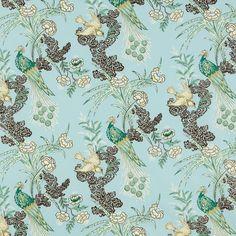 Peacock   175912 in Aqua   Schumacher Fabric by Miles Redd