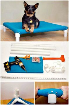 washable raised bed for my munkies! Make Your Own Raised Dog Bed Tutorial - 9 DIY Dog Bed Ideas Using PVC Pipe - DIY & Crafts Dog Cots, Diy Dog Bed, Dog Boarding, Pet Beds, Diy Stuffed Animals, Training Your Dog, Dog Supplies, Pet Care, Bed Ideas