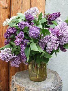 Beautiful lilac bouquet in a glass vase My Flower, Fresh Flowers, Purple Flowers, Beautiful Flowers, Purple Lilac, Deco Floral, Arte Floral, Ikebana, Shades Of Purple