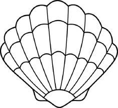 clam shell cutout