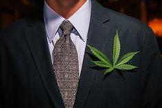 Medical Marijuana Bill Introduced in US Congress | Weedist