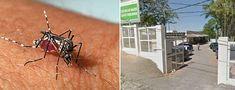 Sintomas de dengue? BH tem esquema especial de atendimento neste sábado Google Street View, Tumblr, Health Ministry, You Are Special, Outfit, Tumbler