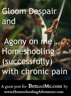 Real Life {While} Homeschooling -- Homeschooling with Chronic Pain a guest post for BenandMe blog by Me