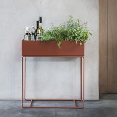 Plant Box - Ochre by Fermliving