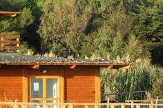 Molise: #Devastato il #centro ambientale sulla spiaggia. Ladri di rame in azione (link: http://ift.tt/2dh7RJo )