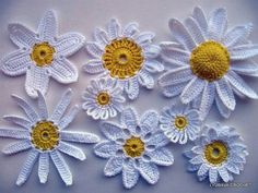 crochet daisiesI ooh ooh iv just had an idea for a blanket with different style and size Daisy's one in each square xx