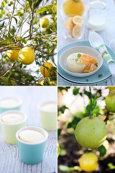 Meyer Lemon, Lime and Quinoa Pudding Cakes