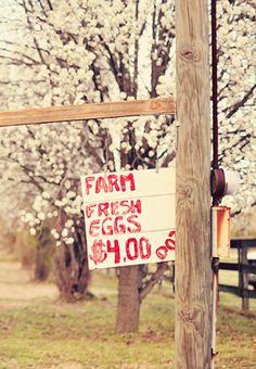 Farm ♥