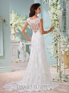 David Tutera for Mon Cheri - 116204 – Dayton - Beautiful wedding dress with hand-beaded Alencon lace appliqués and tulle over charmeuse slim A-line cage dress and slight cap sleeves, plunging scalloped V-neckline with illusion modesty piece, lace appliqué illusion back bodice with crystal button closures, satin slim underskirt with sweep train, tulle and lace appliquéd cage overskirt with scalloped hem and chapel length train.  Sizes: 0 – 20  Colors: Ivory/Champagne, White