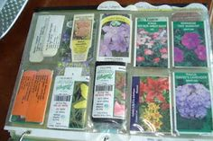 Plant tags in a three-ring binder....great way to keep things organized and easy to store. I think I'll add photos of the gardens with a diagram showing plant placement.