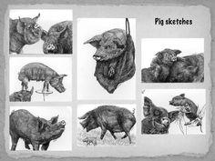 A video about my creative process. A Comics, Moose Art, Videos, Creative, Animals, Animales, Animaux, Animal, Animais
