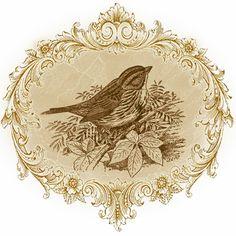 """Cute Things cardiaques: artisanat, décoration et bien plus encore: cartes Découpage: """"Les Oiseaux"""""""