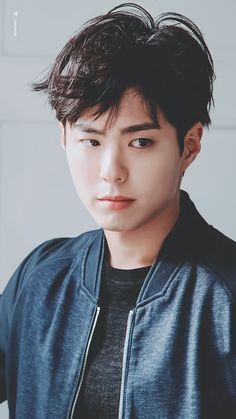 Asian Actors, Korean Actors, Park Bo Gum Wallpaper, Park Bogum, Baby Park, Kim Jisoo, Korean Star, Flower Boys, Asian Boys