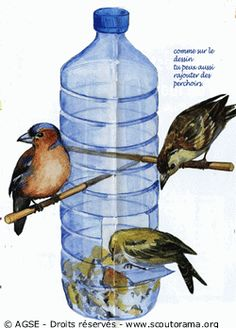 A diy re-purposed bird feeder. Bird House Feeder, Diy Bird Feeder, Humming Bird Feeders, Homemade Bird Feeders, Bird Food, Recycled Bottles, Flower Boxes, Recycled Crafts, Wild Birds
