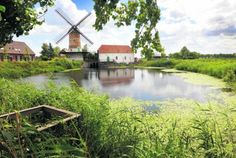 Kilsdonkse molen te Dinther-Beugt :  unieke koren en oliemolen op wind en waterkracht