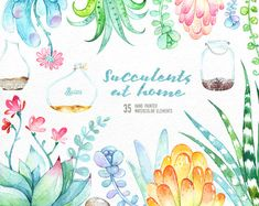Items similar to Succulents at Home. 35 floral Elements and Jars. Hand painted watercolor flowers, wedding diy elements, flowers, invite, jars clipart on Etsy Wreath Watercolor, Watercolor Flowers, Watercolor Succulents, Clipart, Floral Frames, Png Transparent, Floral Bouquets, Cross Stitch Patterns, Diy Wedding