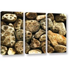 ArtWall Kevin Calkins Petoskey Stone Collage 3-Piece Gallery-Wrapped Canvas Set, Size: 24 x 36, Black