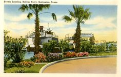 1940's postcard. Scenic landing, Bolivar Ferry, Galveston, TX