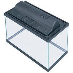 All Glass Aquarium AAG09009 Tank and Eco Hood Combo, 10-Gallon All Glass Aquariums http://www.amazon.com/dp/B0026HZN8E/ref=cm_sw_r_pi_dp_SsAEub1J1T5H6