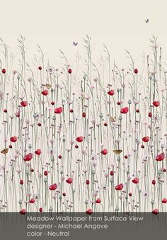Meadow wallpaper from Surface View in Neutral
