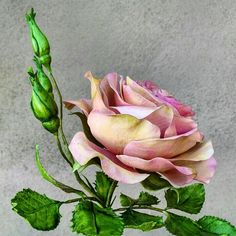 Free formed rose and jasmine - Cake by Catalina Anghel azúcar'arte