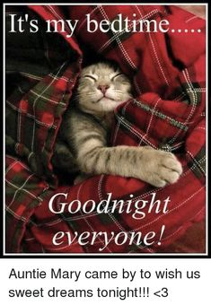 Find and save memes Memes Good Night Funny, Good Night Prayer, Good Night Friends, Good Night Blessings, Good Night Wishes, Good Night Sweet Dreams, Good Night Image, Good Morning Good Night, Greetings For The Day