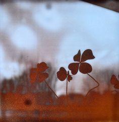 © sophie thouvenin - http://www.prismes.net
