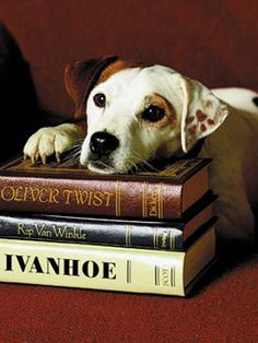 """Wishbone"" -- wonderful books and TV series connecting children and literature"