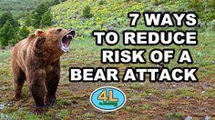 7 ways to reduce chance of bear attack Bear Attack, Brown Bear, Campsite, Caravan, Mammals, Tent, Bears, Fishing, Survival