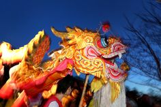 Part of the University of Nottingham's evening celebrations to welcome the year of the horse