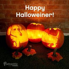 Happy Halloweiner!