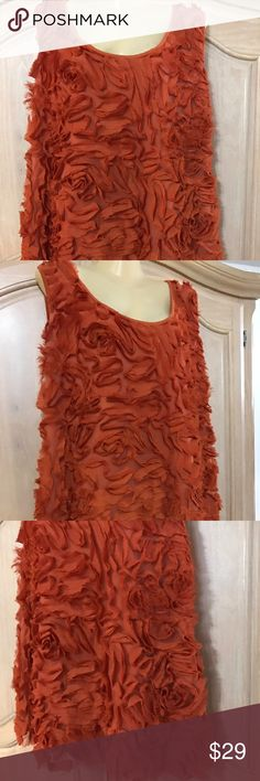 Designer Ashley Stewart shirt Shirt with decorated on the front size 22/24 95% polyester. 5% spandex Ashley Stewart Tops Tank Tops
