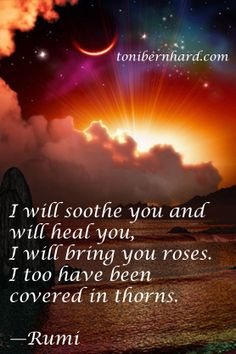 I will soothe you and will heal you. I will bring you roses. I too have been covered in thorns. - Rumi.