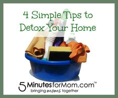 4 Simple Tips to Detox Your Home on http://www.5minutesformom.com