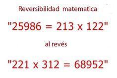 Reversibilidad matemática