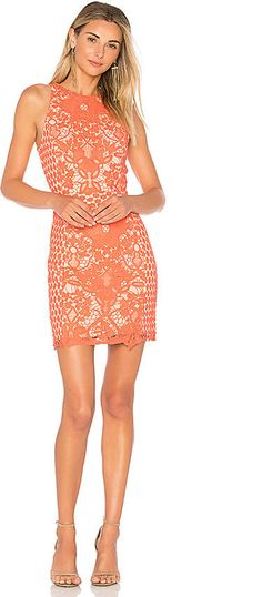 Endless Rose High Neck Floral Crochet Dress, ootd, fashion, fashion blog, on sale