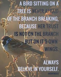 Believe in yourself & God! A bird sitting on a tree is never afraid of the branch breaking, because her trust is not on the branch but on it's own wings. Always believe in yourself. Great Quotes, Quotes To Live By, Me Quotes, Motivational Quotes, Inspirational Quotes, Bird Quotes, Always Believe, Believe In You, Cool Words