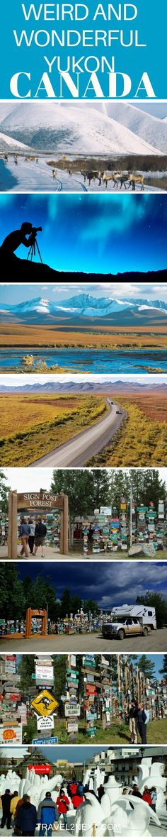5 Cool and Quirky Things To See In Yukon Territory, Canada. Took our honeymoon here! Alberta Canada, Cool Places To Visit, Places To Go, Vancouver, Yukon Canada, Travel Guides, Travel Advice, Travel Stuff, Travel Tips