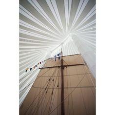 Replica of Viking ship Heritage Hjemkomst Interpretive Center Moorhead Clay County Minnesota USA Canvas Art - Panoramic Images (18 x 24)