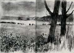 Artist: Vivien Blackburn – Media: Charcoal and Charcoal Pencil