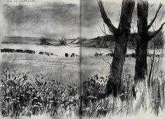 Artist: Vivien Blackburn – Media: Charcoal and Charcoal Pencil