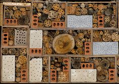 """permatech: """" This remarkable structure can be found in Place des Jardins in Paris and is known as a bee hotel. You may be wondering what bees need a hotel for, when they make their own hives. Bug Hotel, Mason Bees, Bee House, Home Pictures, Bee Keeping, Funny Animal Pictures, Welcome, Stuff To Do, Vintage World Maps"""