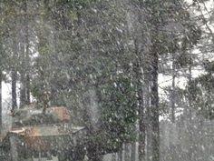 #Clima: Instituto de meteorologia confirma neve em Curitiba e Região | A última ocorrência do fenômeno na capital havia sido em 1975. Flocos de neve e chuva congelada foram registrados em diversos bairros. http://mmanchete.blogspot.com.br/2013/07/instituto-de-meteorologia-confirma-neve.html#.Ue7DTY1QGSo