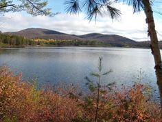Buck Pond compares to a mountain retreat; it offers secluded sites, numerous water access, a guarded bathing beach, and a walking path that stretches for miles along an abandoned railroad bed. The campground offers a variety of recreational opportunities, including canoeing and boating, fishing, hiking, and bicycling.