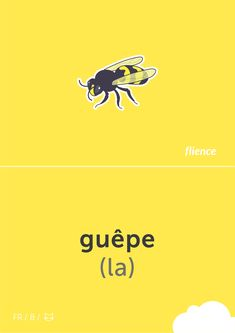 Guêpe #flience #animal #insects #french #education #flashcard #language