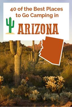 There's something for everyone in Arizona: lake camping, RVing, tent camping and free camping!