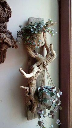 Suporte para suculentas to make a succulent terrarium pots Driftwood Planters, Driftwood Projects, Driftwood Art, Driftwood Ideas, Driftwood Sculpture, Diy Projects, Project Ideas, Garden Crafts, Garden Art