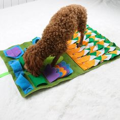 IFOYO Dog Feeding Mat Dog Snuffle Mat Small Dog Training Pad Pet Nose Work Blanket Non Slip Pet Activity Mat for Foraging Skill Stress Release S Green -- Be sure to check out this awesome product. (This is an affiliate link) Rough Collie Puppy, Collie Puppies, Large Dogs, Small Dogs, Diy Dog Toys, Train Activities, Activity Mat, Dog Training Pads, Cat Feeding