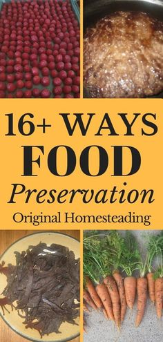 16+ WAYS TO FOOD PRESERVATION. Learn about preserving food from freezing and canning to dehydrating and smoking. Also, included are tips for making jams, jellies, jerky and sausage!! Preserve your Garden Bounty to ensure your family's panty!